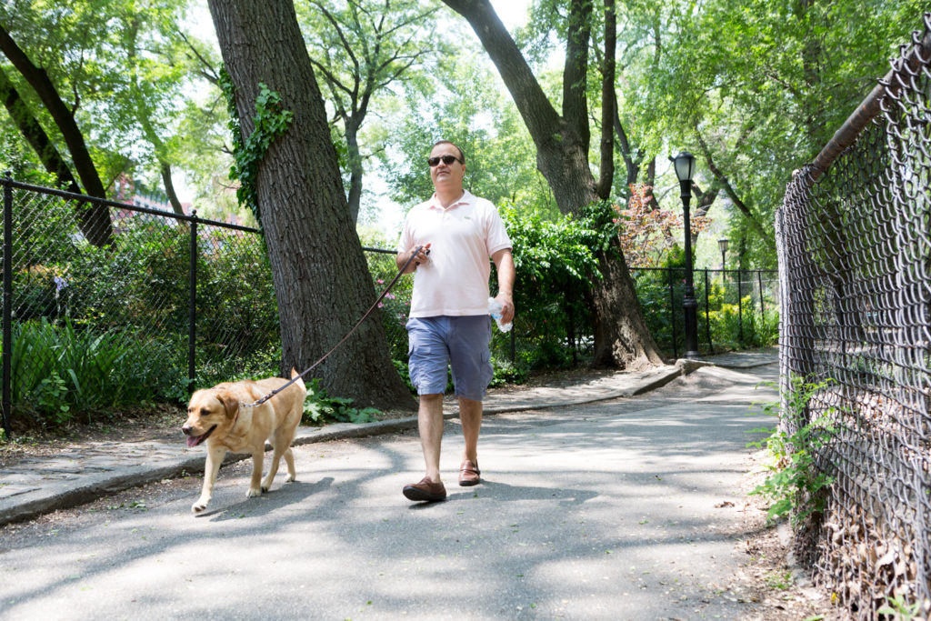 PAWS NY volunteer provides dog walking services