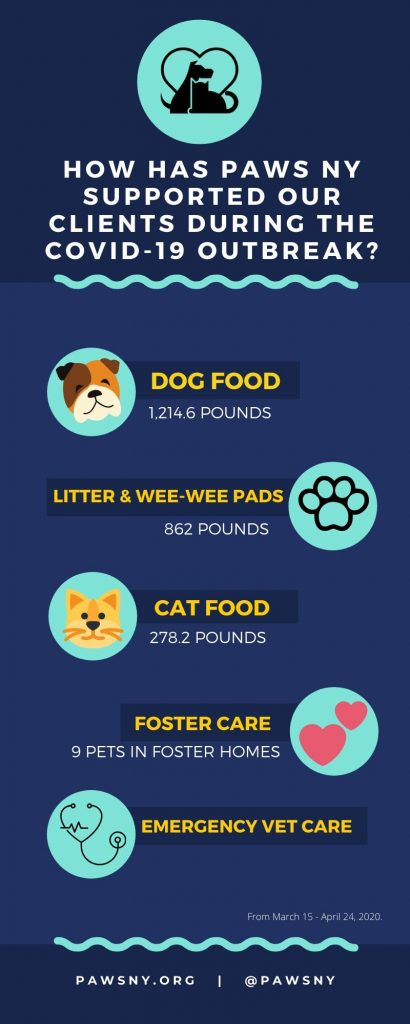 COVID-19 Infographic: How PAWS NY is Supporting its Clients