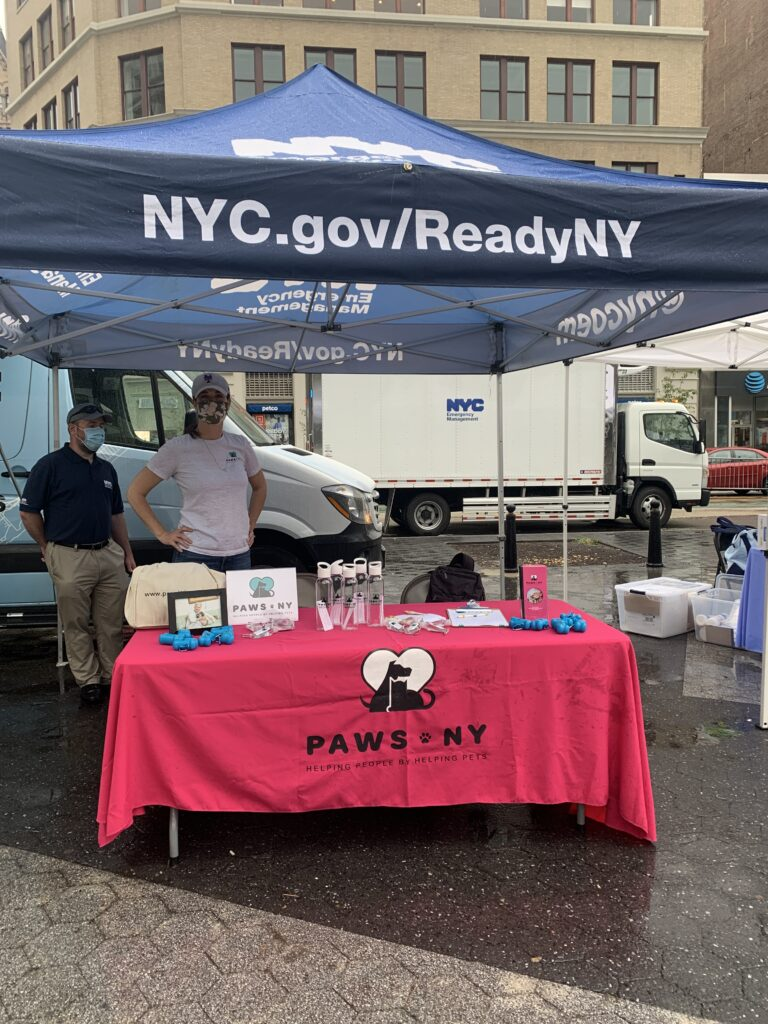 PAWS NY table at an outdoor event. A woman stands in a grey PAWS t-shirt with her hands on her hips and a face mask. There's a table with a pink tablecloth with PAWS NY logo, plus items on the table to help spread the word.