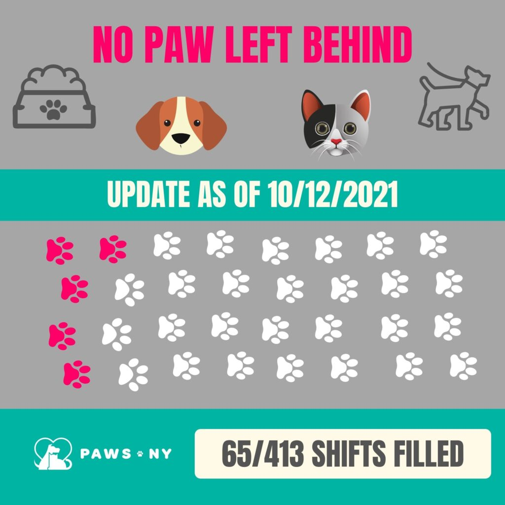 Graphic image of paws representing how many volunteer shifts have been filled: 65 out of 413.