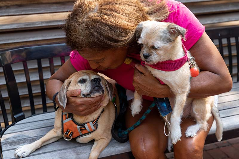 Edna, a PAWS NY client, wears a pink shirt and sits on a wooden bench. She holds her dog Pepa in our arms, while Maxine sits on the bench next to her. Edna bends down to kiss Maxine on the face.